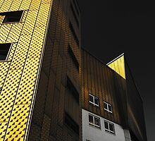 Berliner Philharmoniker by albertot