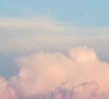 Orange Cloudscape Vertical by Inimma