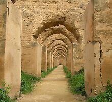 Meknes granary by heatherf
