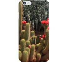 Flowering African Cactus iPhone Case/Skin