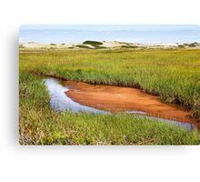 Green grass landscape Canvas Print