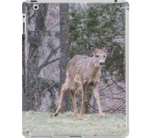 Okauchee Lake Deer iPad Case/Skin