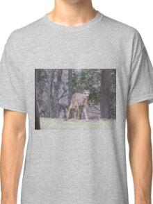 Okauchee Lake Deer Classic T-Shirt