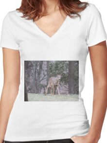 Okauchee Lake Deer Women's Fitted V-Neck T-Shirt