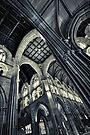 Cathedral by Heather Prince ( Hartkamp )