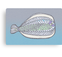 Funny Flat Fish Canvas Print