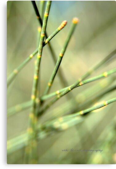 Green Tangle © by Vicki Ferrari