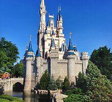 Cinderella Castle by dlr-wdw