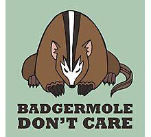 Badgermole Don't Care Photographic Print