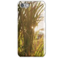 Rural Summer iPhone Case/Skin