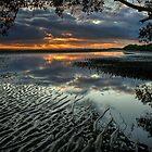 Natures Wonders by Chris Lofqvist