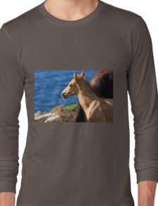 Colt By The Sea Long Sleeve T-Shirt