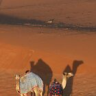 Camels by Francisco Vasconcellos