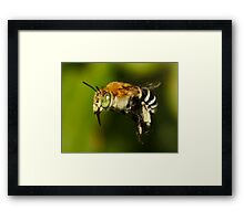 Scary Hairy Framed Print