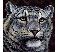 Chevron - Snow Leopard Painting with Purple and Gold Chevron Pattern Photographic Print