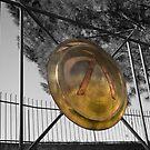 Shield of Lakedaimonia by Vagelis Georgariou