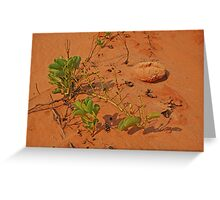 James Price Point, Broome,  Western Australia Greeting Card