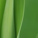 all green by liak