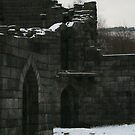 cold castle by Carl deary