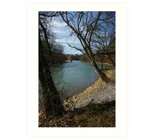 River Bank  Art Print