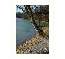 River Bank 2 Art Print