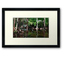 Southern Accents Framed Print