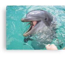 Flipper Canvas Print