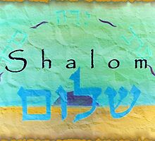 Morning til Evening Praise Shalom by aline
