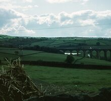 Railway viaduct seen Between Harewood House and Haworth, West Yorkshire England 198406030033m by Fred Mitchell
