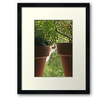 I'll be watching you Framed Print