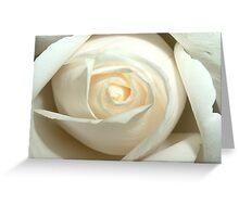 Albino Beehive Greeting Card