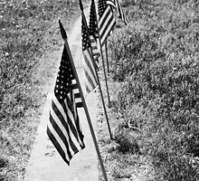 usa flags at cementary  by paul35