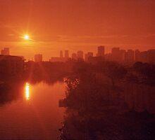 Miami Heat by njordphoto