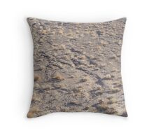 Running Ground Throw Pillow