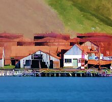 Stromness Whaling Station 2 by Marylou Badeaux