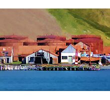 Stromness Whaling Station 2 Photographic Print
