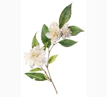 Camellia - Flowering Botanical  T-Shirt