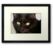 A Portrait of Midnight Framed Print