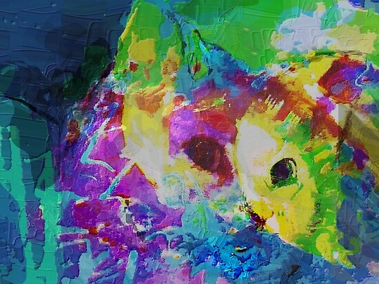 Cat communing with nature by ♥⊱ B. Randi Bailey