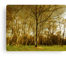 tree epics Canvas Print