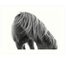 Horse Mane Art Print