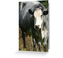 There's A Cow In My Garden! Greeting Card