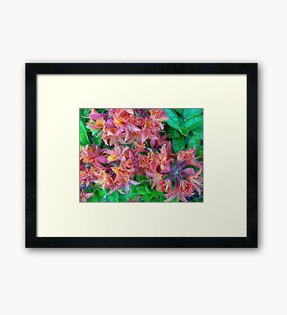Multi Colored Vision Framed Print