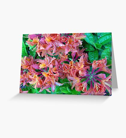 Multi Colored Vision Greeting Card