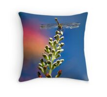 Dragonfly on colourful flowers Throw Pillow
