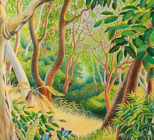 Forest in Far North Queensland by Gregory Pastoll