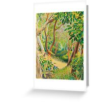 Forest in Far North Queensland Greeting Card