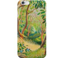 Forest in Far North Queensland iPhone Case/Skin