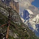 Yosemite Valley by Dennis Jones - CameraView