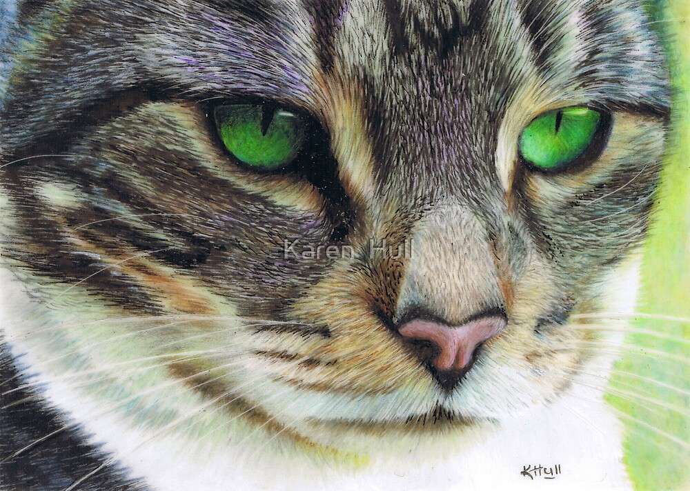 Emerald Eyes by Karen  Hull